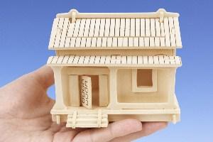 Первым зданием в «Сколково» станет «Зеленый дом»