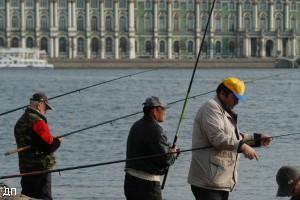 налоги на грибы рыбалку