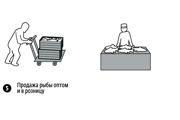 Возможная схема организации рыбоводческого хозяйства.